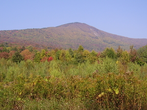 Monte Greylock
