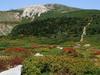 Mount Haku From Midagahara