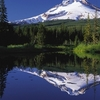 Mount Hood Reflected In Mirror Lake