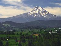 Mount Hood Town