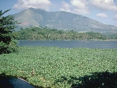 Mount Iriga