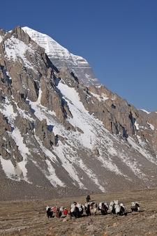 Mount Kailash Hiker Group