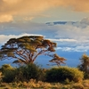 Mount Kilimanjaro From Amboseli National Park - Kenya