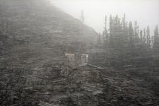 Mount Kipp - Glacier - USA