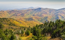 Mount Mitchell - South Toe NC