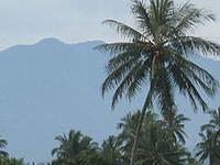 Mount Sago