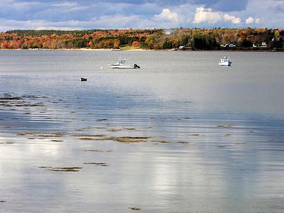 Mount Salisbury Cove