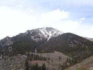 Monte Shavano