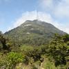 Mount Te Aroha Scenic Area - North Island - New Zealand
