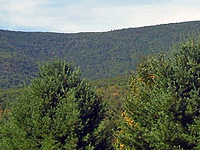 Mount Tremper