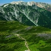 Mount Yakushi