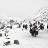 Mt. Everest - Sagarmatha NP