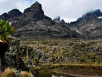 4 Days Trekking and Hiking Mt Kenya
