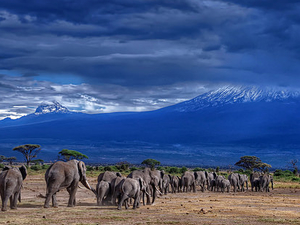 Mt Kenya 4 Days Package