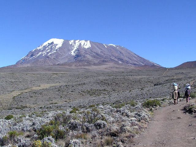 Kilimanjaro Climbing - (shira) Lemosho Glades Route Photos