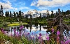 Mt Shuksan In Highwood Lake WA