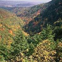 Mount Washington State Forest