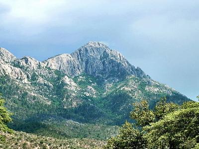 Mt. Wrightson Picnic Area