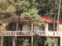 Muba Nagzira Jungle Resort