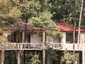 Muba Camp Nagzira
