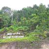 Mu Ko Chang National Park