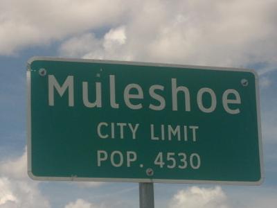 Muleshoe Sign
