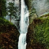 Picture Of The Multnomah Waterfall