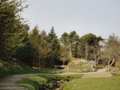 Municipal Park - Faroe Islands