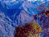 Mighty Himalayas