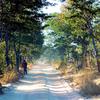 Mupa Parque Nacional