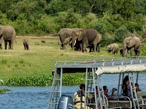 Murchision Falls Safari Fotos