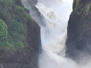 3 Day Safari Experience (Murchison Falls National Park) Photos