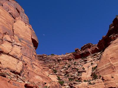 Murphy Loop Trail - Canyonlands - Utah - USA