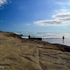 Muriwai Coastal View - Auckland NZ