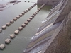 Musi River (India)
