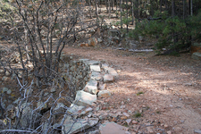 Myrtle Trail - Near Mogollon Rim