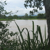 The Magdalena River