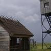 Keemu Bird Tower