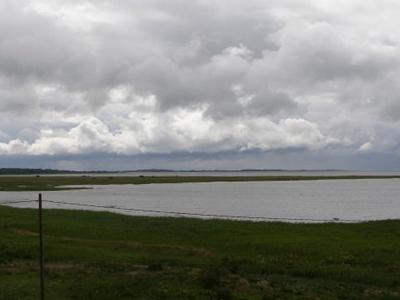 Matsalu National Park