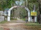 Wildlife in Assam Manas Tiger Reserve Photos