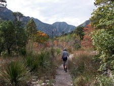 McKittrick Canyon Trail
