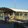 Meadowbank Ferry Wharf