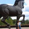 Meijer Gardens American Horse