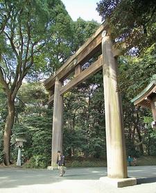 Torii Leading To The Meiji Shrine Complex