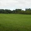 A Field Along Lenape Trail