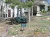 A Small Community Garden