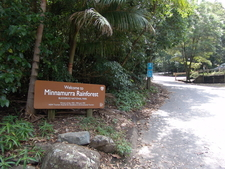 Minnamurra Rainforest Entrance