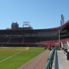 Third Base Line At Dick Howser Stadium