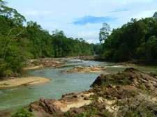 Jasin River Joins Endau At Kuala Jasin