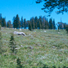 Another View Of Mokelumne Wilderness